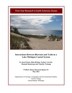 Interactions Between Blowouts and Trails in a Lake Michigan Coastal System