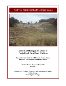 Analysis of Management Efforts at North Beach Park Dune, Michigan