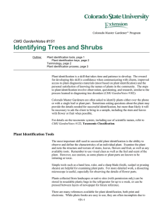 Identifying Trees and Shrubs  CMG GardenNotes #151