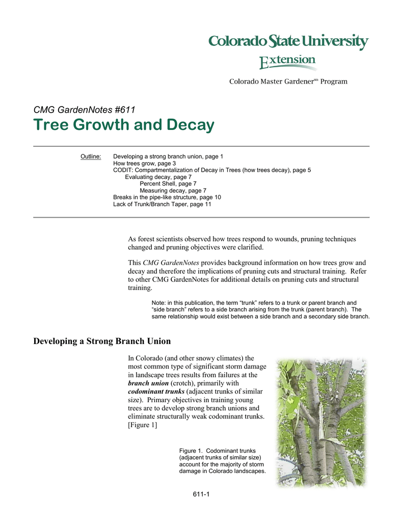Tree Growth And Decay CMG GardenNotes 611