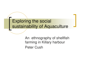 Exploring the social sustainability of Aquaculture An  ethnography of shellfish