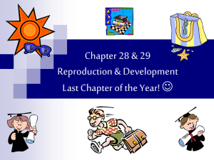 Chapter 28 & 29 Reproduction & Development