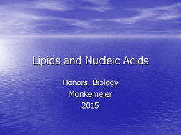 Lipids and Nucleic Acids Honors  Biology Monkemeier 2015