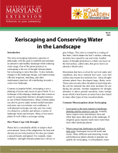 Xeriscaping and Conserving Water in the Landscape