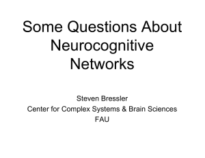 Some Questions About Neurocognitive Networks Steven Bressler