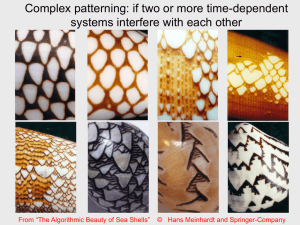 7 Complex patterns.ppt