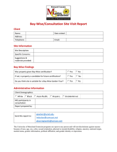 B-W and Consultation Site Report