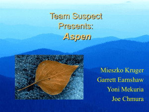 Aspen Team Suspect Presents: Mieszko Kruger