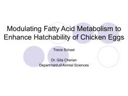 Modulating Fatty Acid Metabolism to Enhance Hatchability of Chicken Eggs Travis Schaal