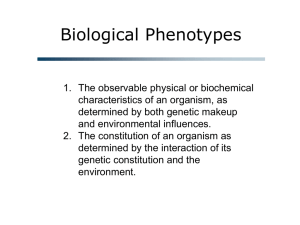 Biological Phenotypes