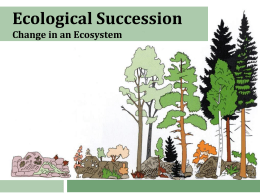 Worksheet Ecological Succession Worksheet ecological succession notes and worksheet succession