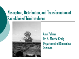 Absorption, Distribution, and Transformation of Radiolabeled Trinitrotoluene Amy Palmer Dr. A. Morrie Craig