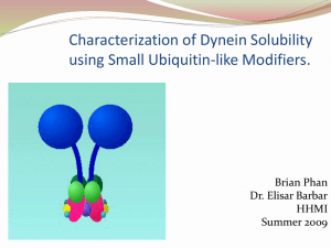 Characterization of Dynein Solubility using Small Ubiquitin-like Modifiers. Brian Phan Dr. Elisar Barbar