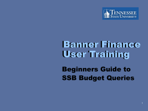 Banner Finance User Training Beginners Guide to SSB Budget Queries