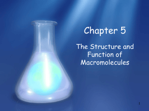 The Structure Function of Molecules