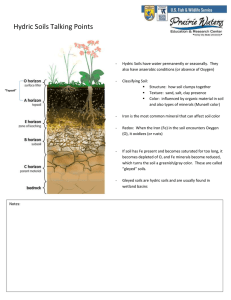 Hydric Soils Talking Points