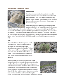 Pika Fact Sheet