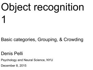 Object recognition 1 Basic categories, Grouping, & Crowding Denis Pelli