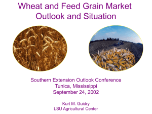 Wheat and Feed Grain Market Outlook and Situation