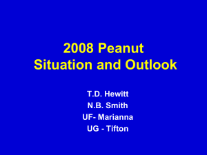 2008 Peanut Situation and Outlook T.D. Hewitt N.B. Smith