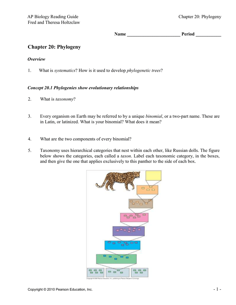 ch 20 reading guide rh studylib net ap biology chapter 25 phylogeny and systematics study guide answers ap biology chapter 25 phylogeny and systematics study guide answers