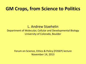 GM Crops - from Science to Politics Nov. 2013 (Powerpoint Slides)