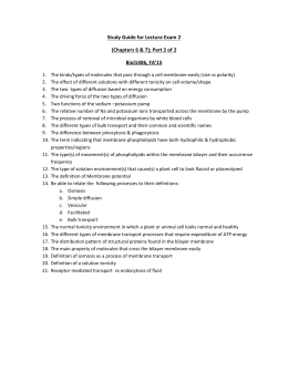 Cell Membrane Worksheet Answers Worksheets for all | Download and ...