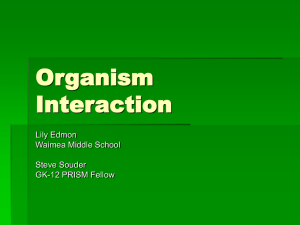 Organism Interaction Powerpoint
