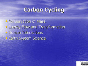 Carbon Cycling • Conservation of Mass Energy Flow and Transformation