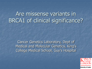 Are missense variants in BRCA1 of clinical significance?