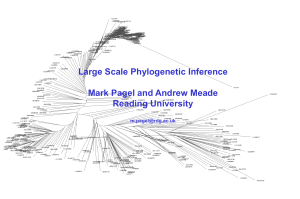 Large-Scale Phylogenetic Inference