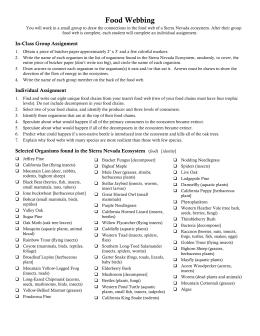 The sniper essay   Business plan writer jobs