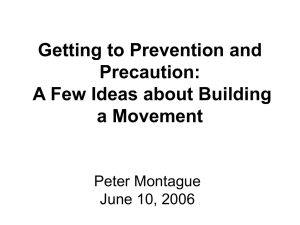 Getting to Prevention and Precaution: A Few Ideas about Building a Movement