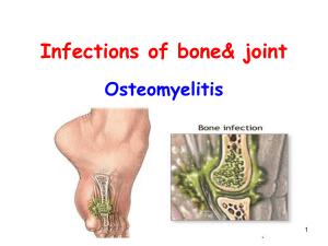Bone and joint inflammatory lesion