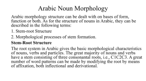 Arabic Noun Morphology