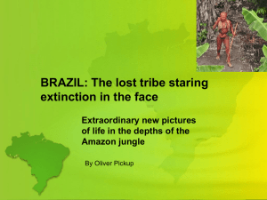 BRAZIL: uncontacted tribes threatened