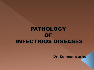 infection lecture