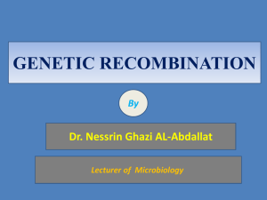 GENETIC RECOMBINATION Dr. Nessrin Ghazi AL-Abdallat By Lecturer of  Microbiology