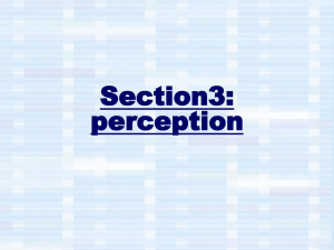 Section3: perception