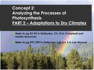 Concept 2: Analyzing the Processes of Photosynthesis