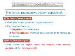 female reproductive physiology