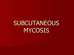 SUBCUTANEOUS MYCOSIS