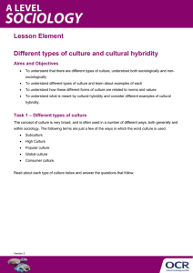 Different types of culture and cultural hybridity - Activity - Lesson element (DOCX, 174KB)