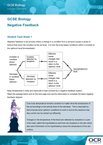 Negative feedback in biology activity (DOC, 1MB)