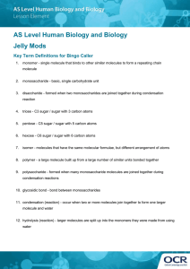 Jelly Mods activity - Key terms for the bingo caller (DOC, 882KB)