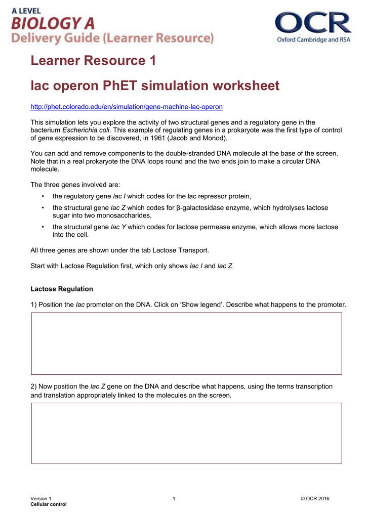 Printable Worksheets realidades 1 worksheets : Avancemos 1 Worksheets - Checks Worksheet