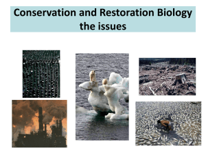 Conservation and Restoration