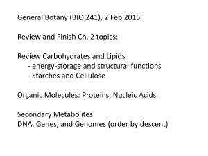 General Botany (BIO 241), 2 Feb 2015 Review Carbohydrates and Lipids