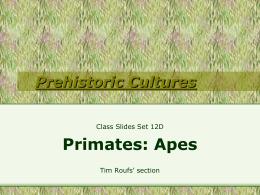 Class Slides Set #12D