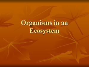 Organisms in an Ecosystem